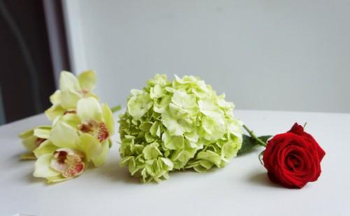 Kết quả hình ảnh cho nguyên liệu cắm hoa lan