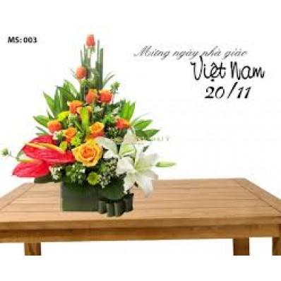 hoa-20-11-025