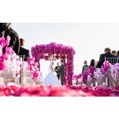 Cổng hoa cưới HC-045